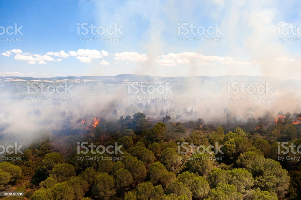 Aerial View of Forest Fire stock photo