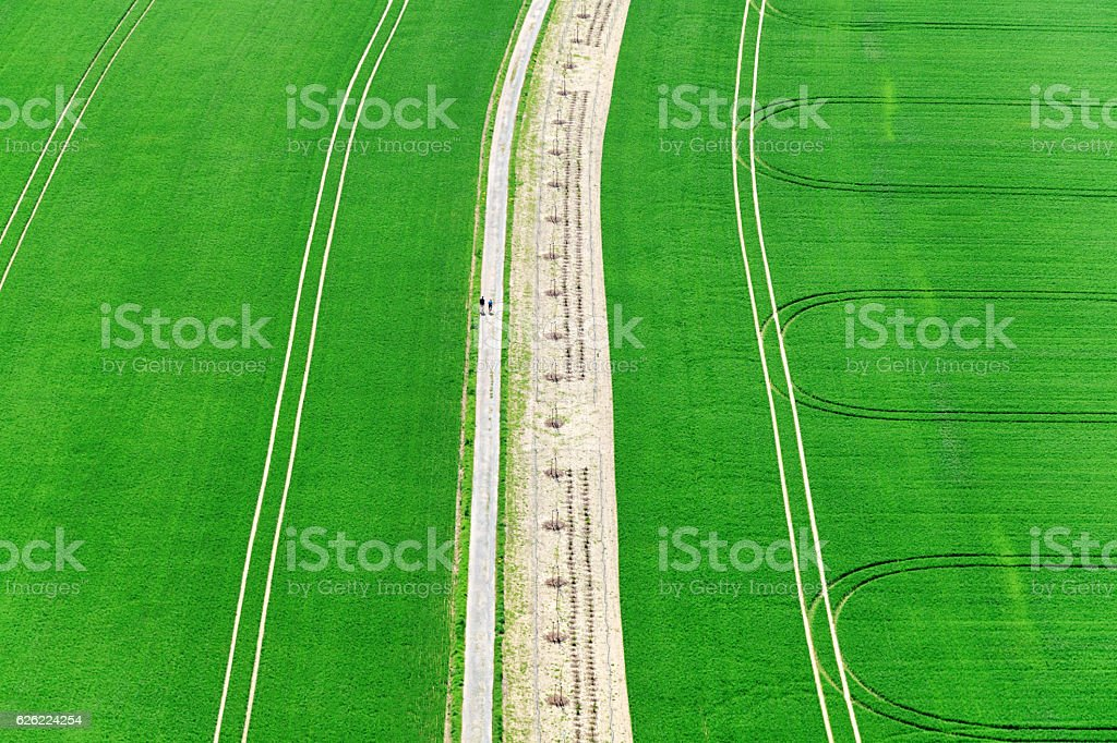 Aerial view of green grass field in Saxon Switzerland, Germany stock photo