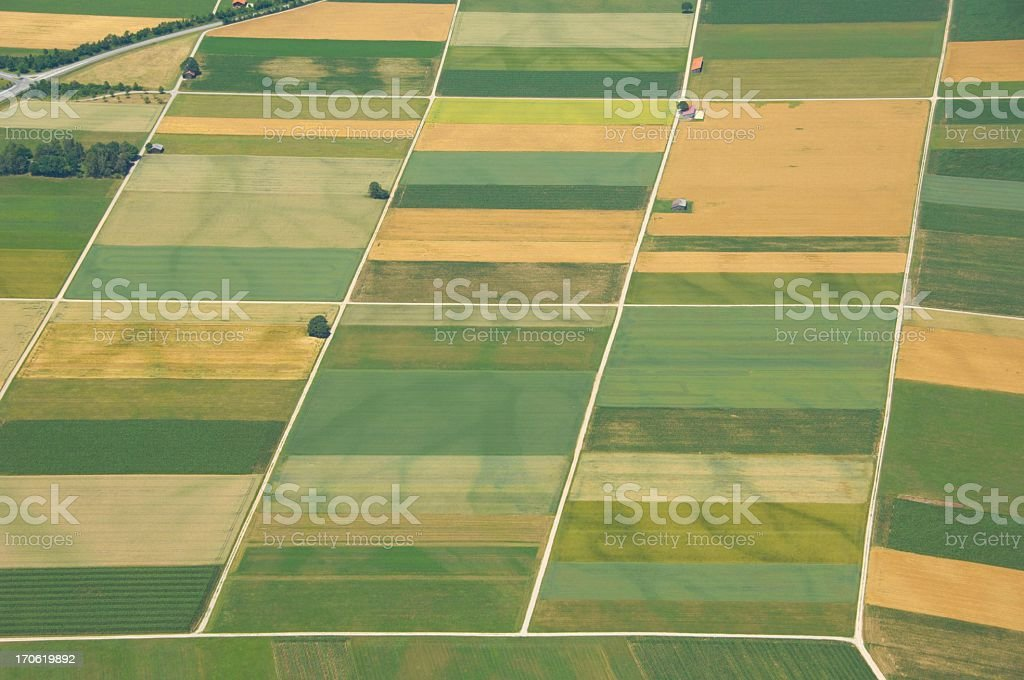 Aerial view of gridded farmlands stock photo