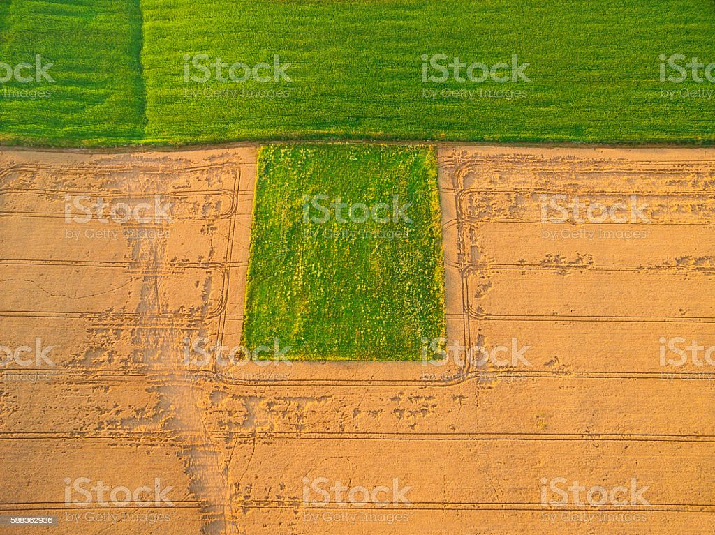 Aerial view of plowed and sown fields stock photo