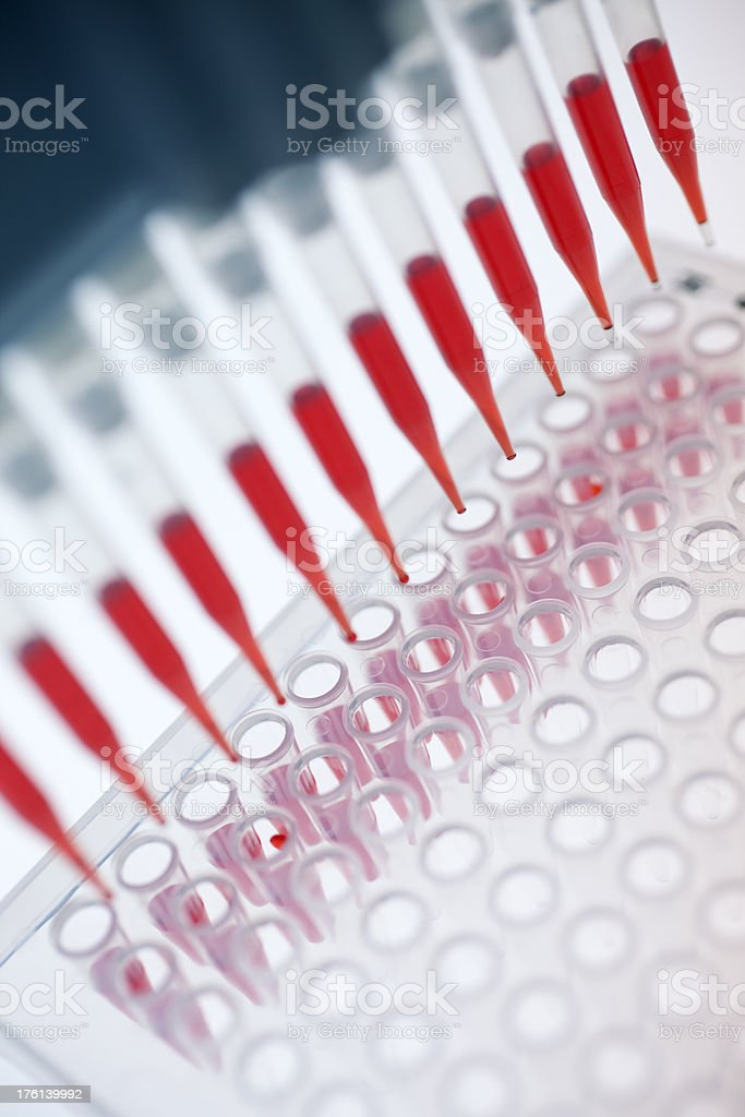 Aerial view of red pipettes filling reservoir wells stock photo