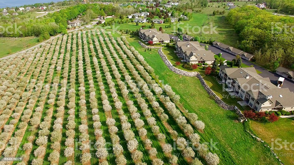 Aerial view of scenic Door County Wisconsin, cherry trees blossoming stock photo