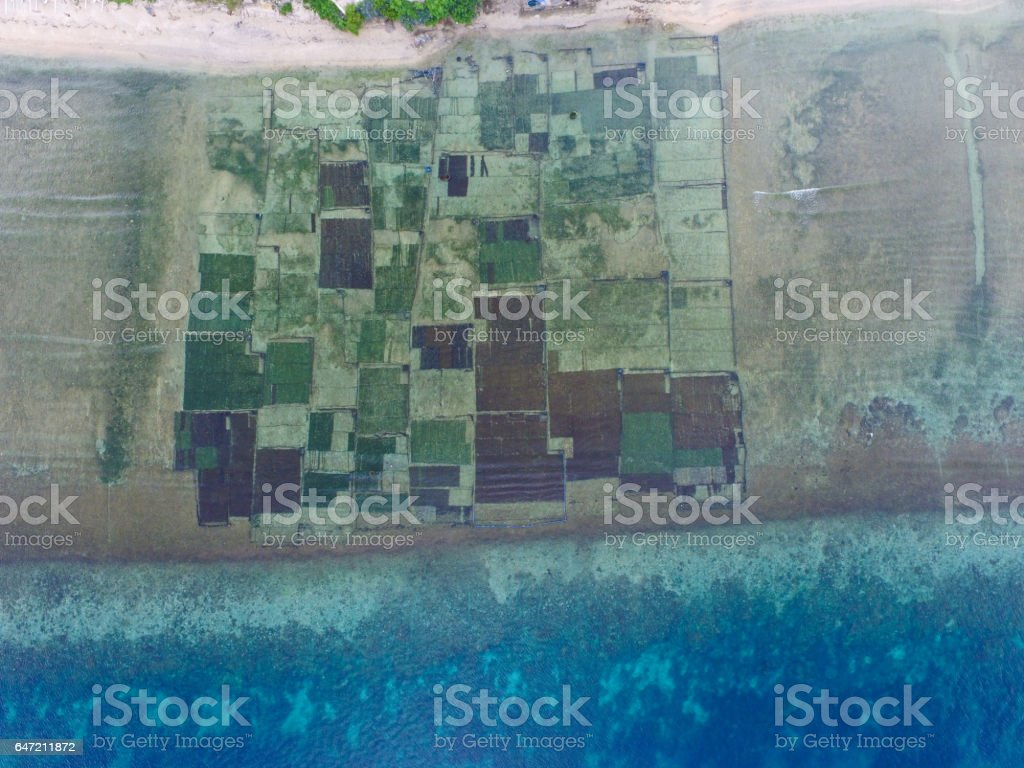 Aerial view of seaweed farm stock photo