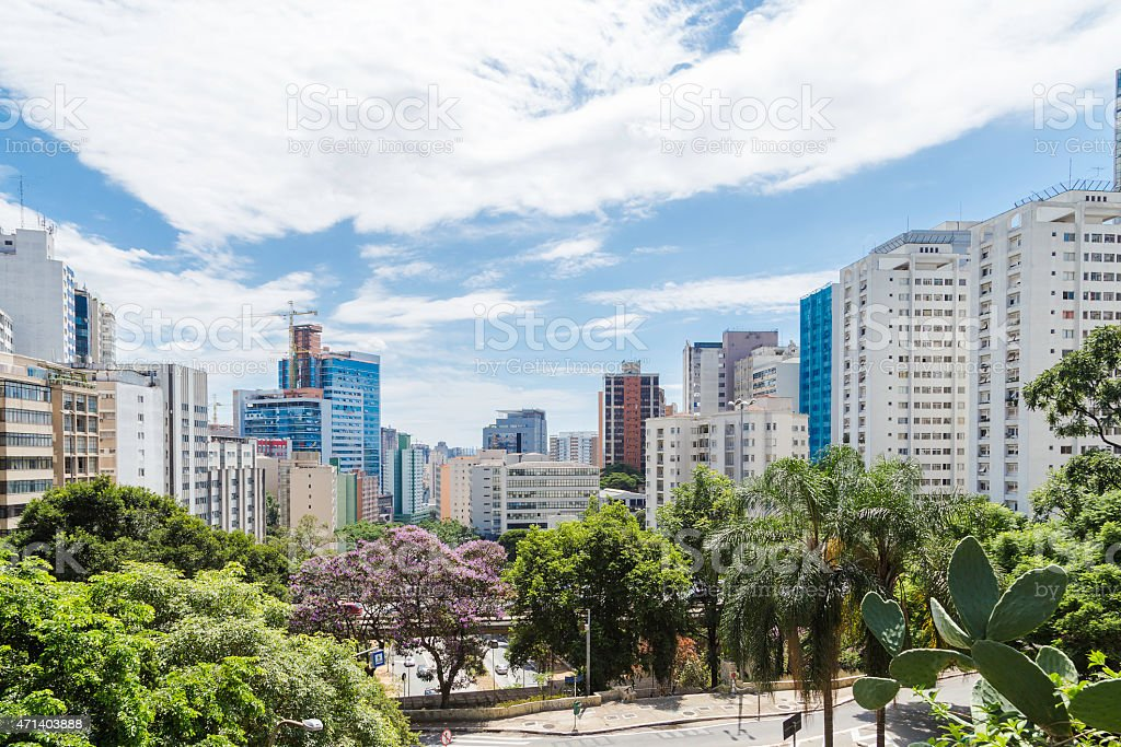 Aerial view of skyline of Sao Paolo, Brazil with trees stock photo