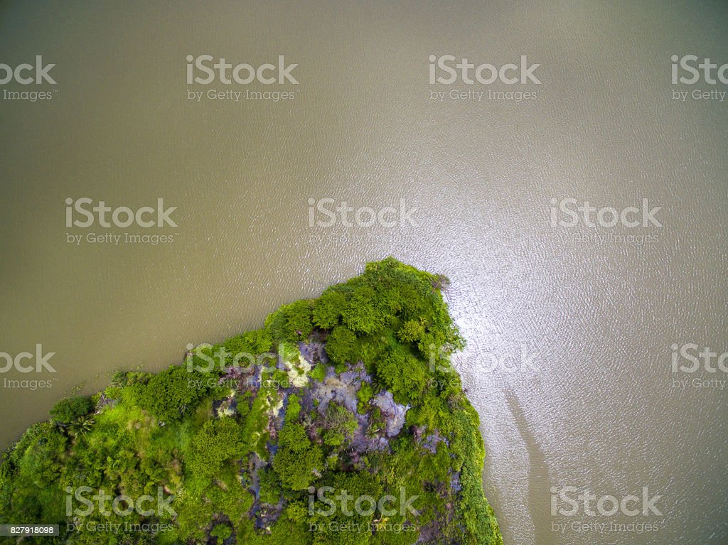 Aerial view of small green island in big river stock photo