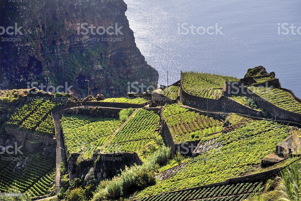 Aerial view of southern coast of Madeira island, Portugal stock photo