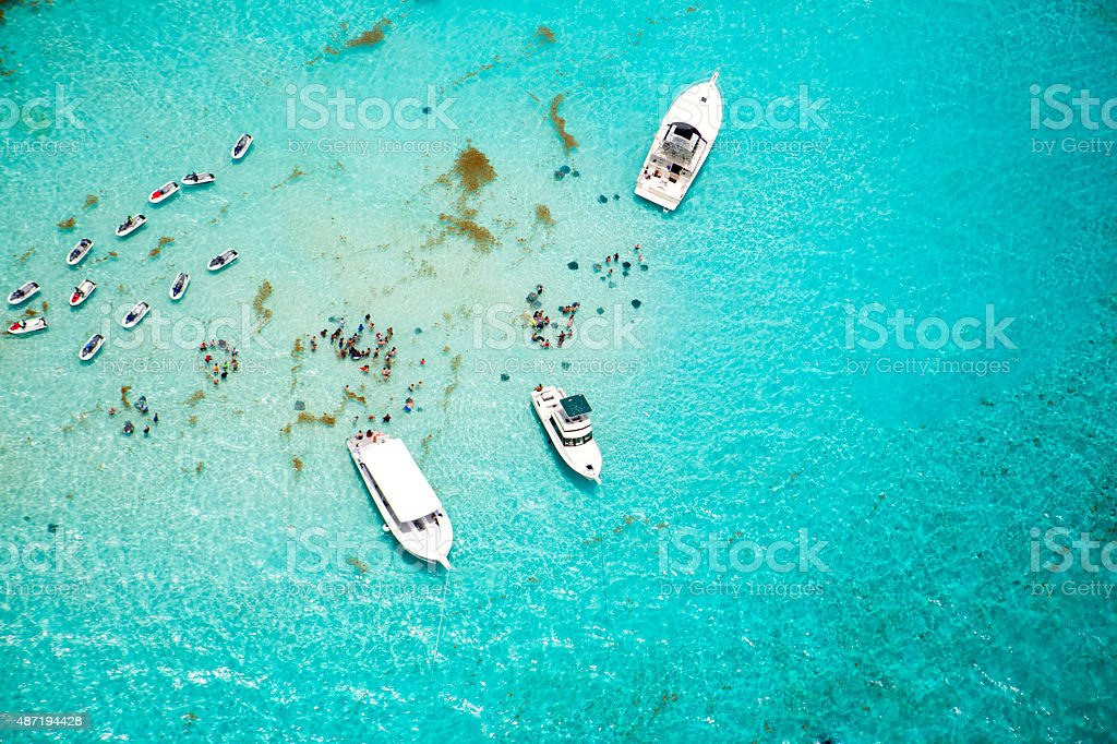 Aerial view of stingrays at Stingray City on Grand Cayman stock photo