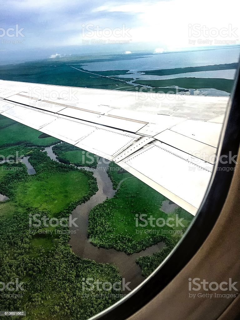 aerial view of swamp stock photo