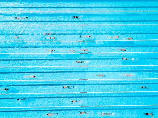 aerial view of swimmers in a blue pool stock photo