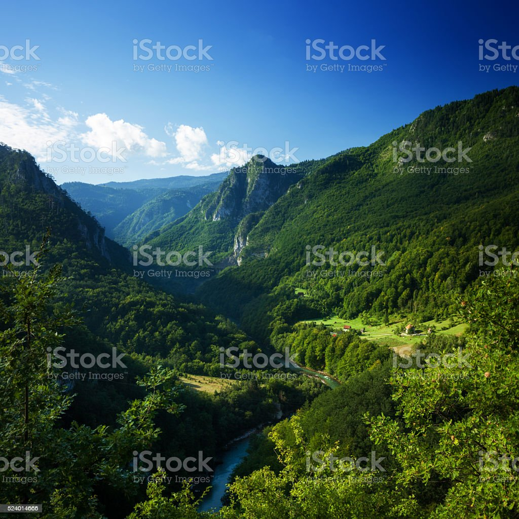 Aerial view of Tara river gorge. stock photo
