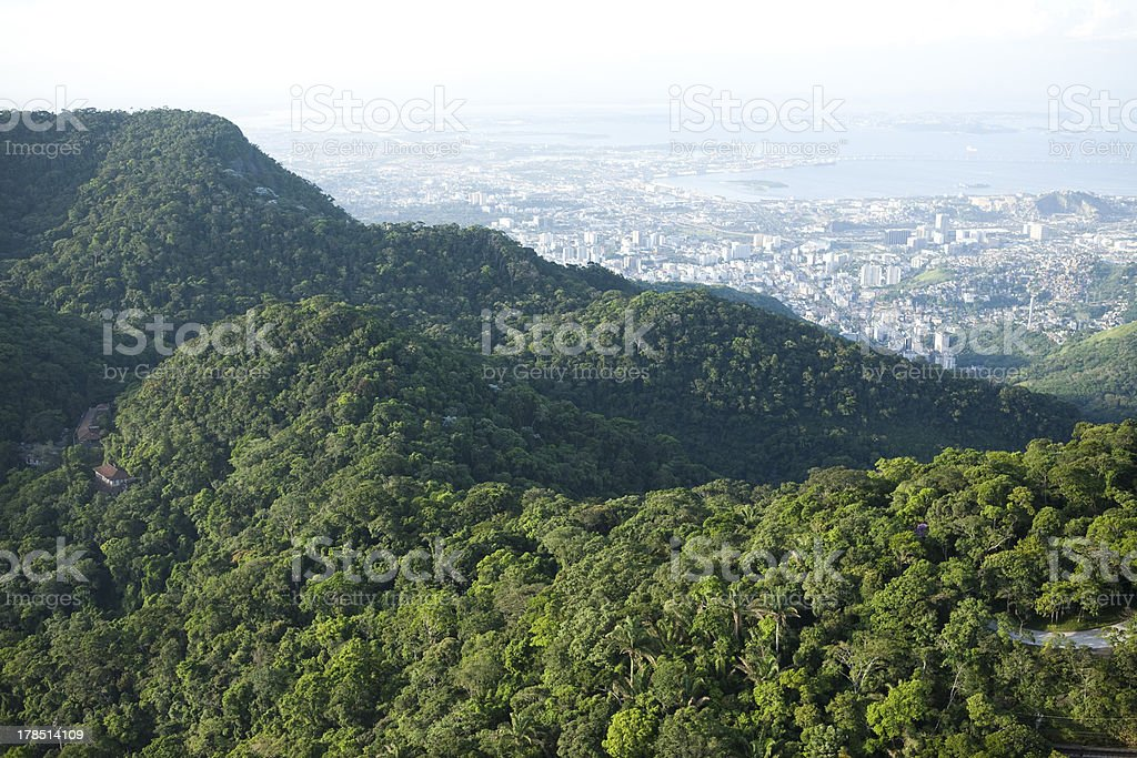 aerial view of the forest;Tijuca National Park royalty-free stock photo