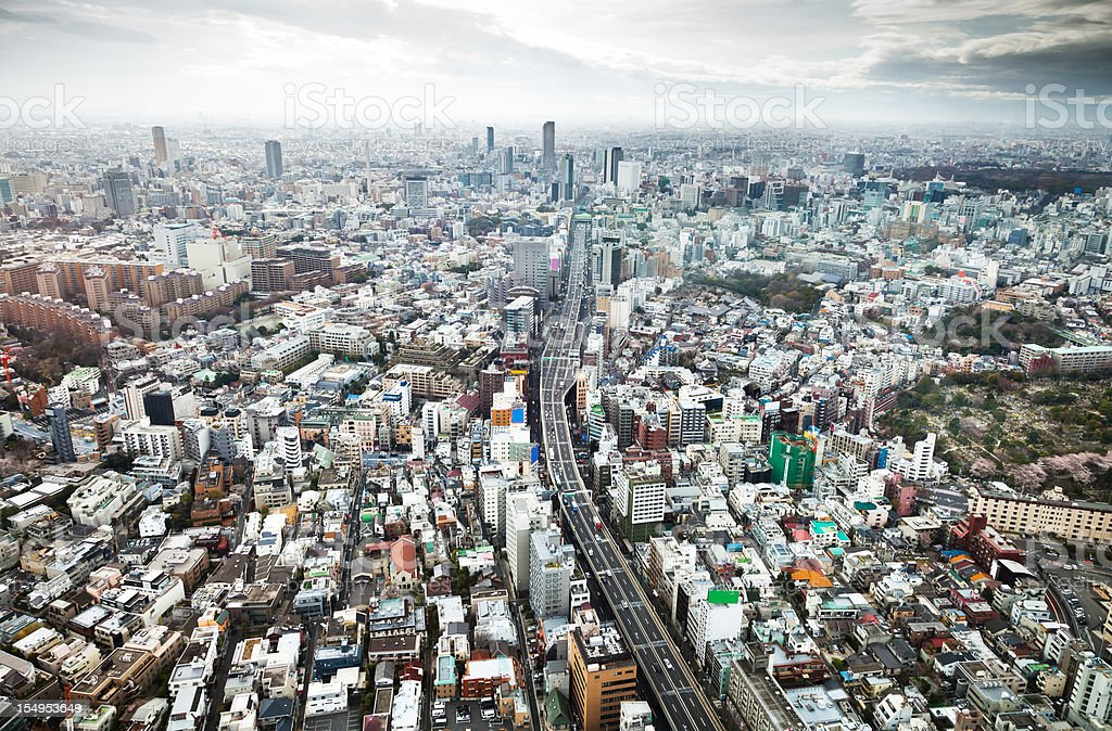 Aerial view of the mega city of Tokyo. royalty-free stock photo