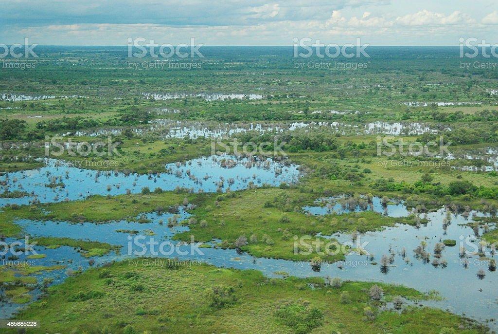 Aerial view of the Okavango Delta, Botswana, Africa stock photo