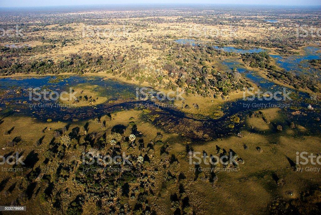 Aerial view of the Okavango Swamp, Moremi Game Reserve, Botswana stock photo
