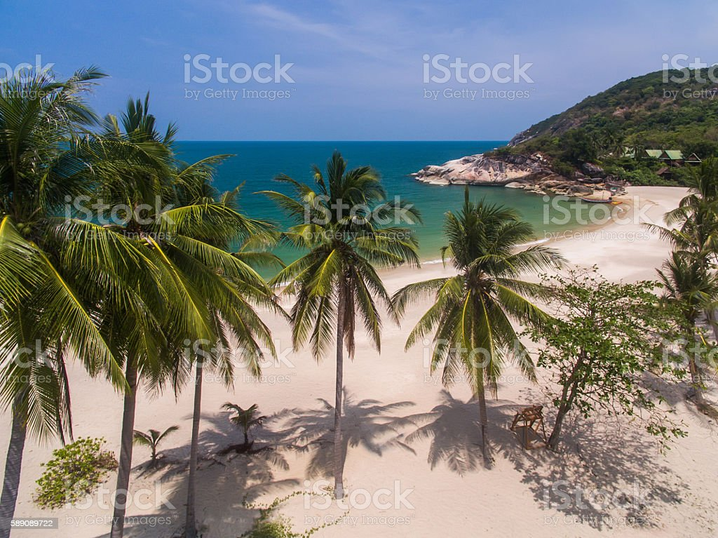 Aerial view of the sea, palm trees and beach stock photo