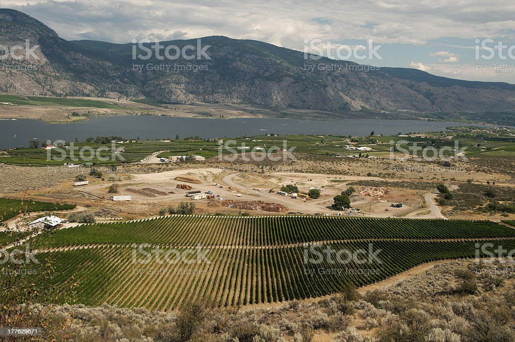 Aerial view of the wine city landscape royalty-free stock photo