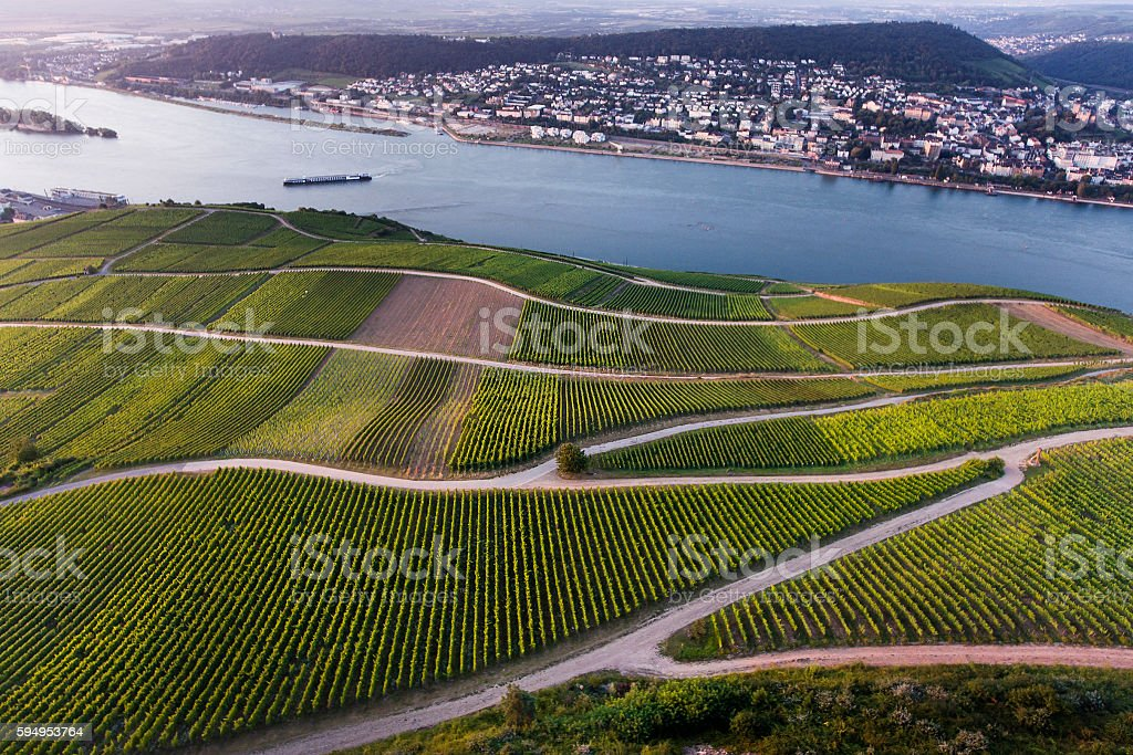 Aerial view of vineyards and River Rhine, Bingen stock photo