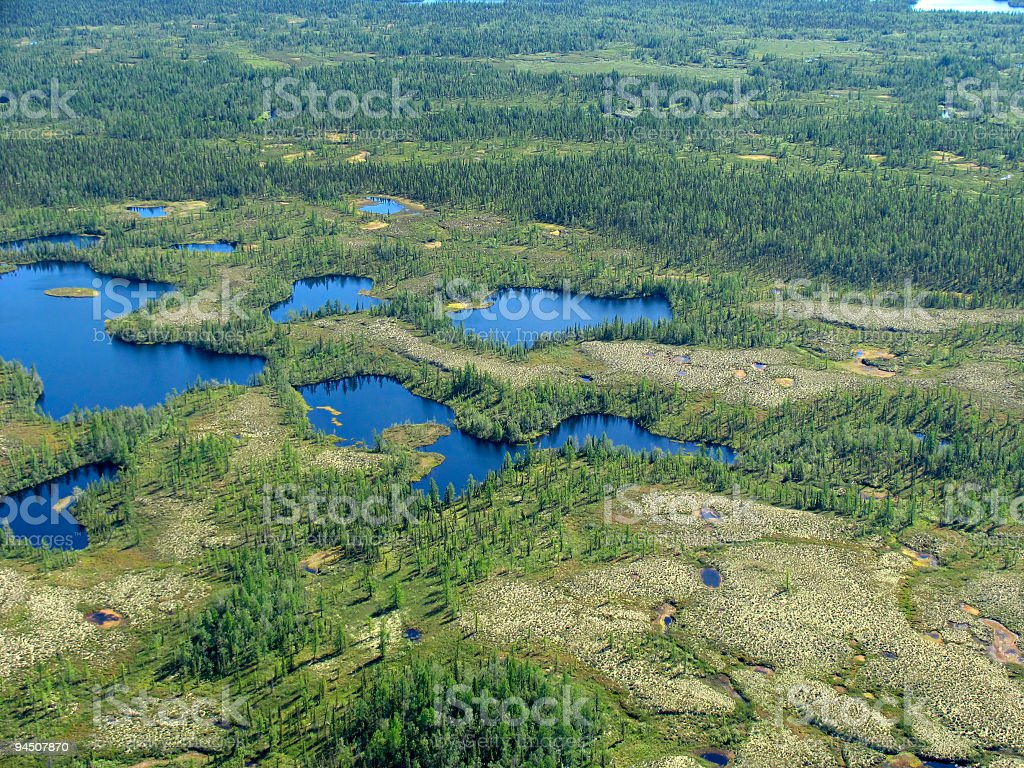 Aerial view on forest-tundra royalty-free stock photo