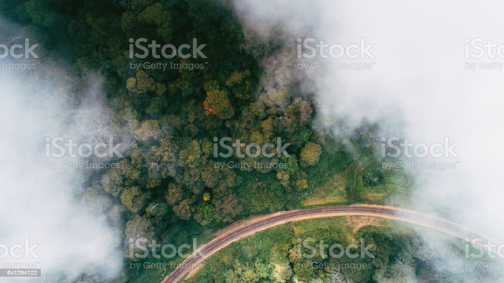 Aerial view on tea plantation in Sri Lanka stock photo
