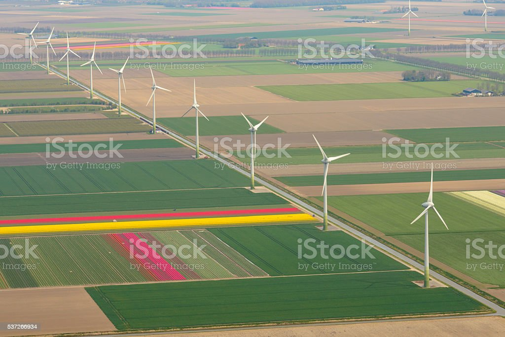 Aerial view on wind turbines between fields of tulip flowers stock photo