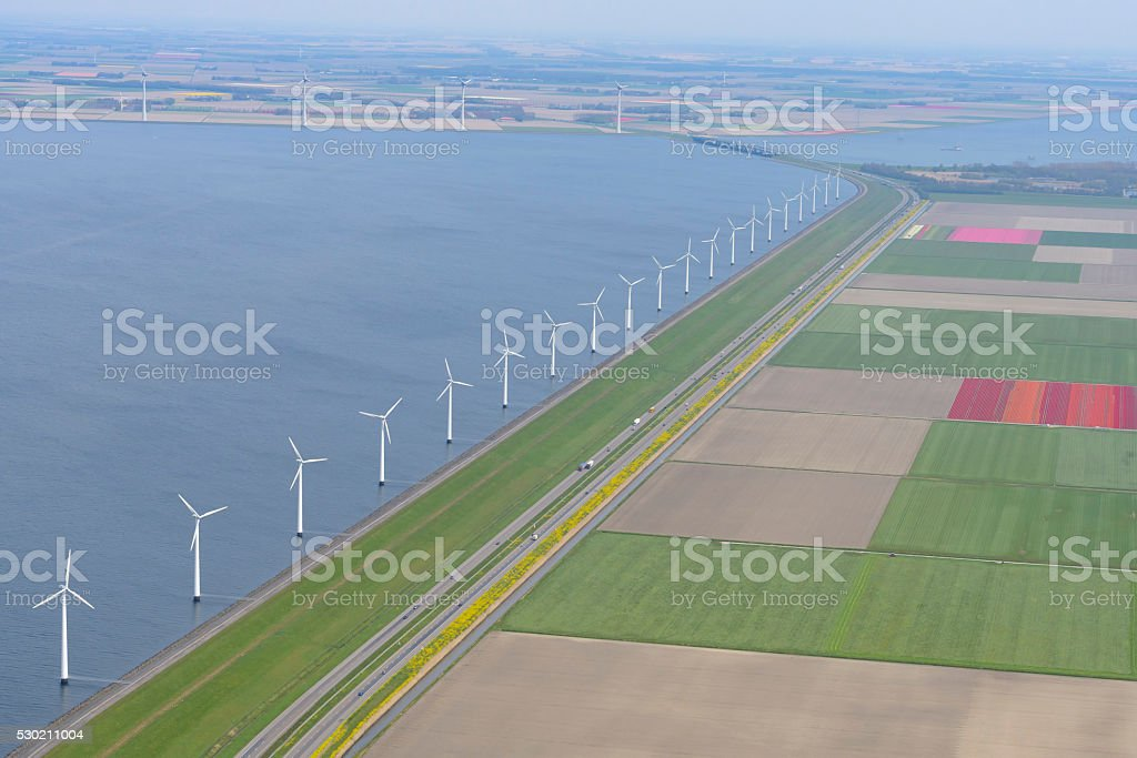 Aerial view on wind turbines with fields of tulip flowers stock photo