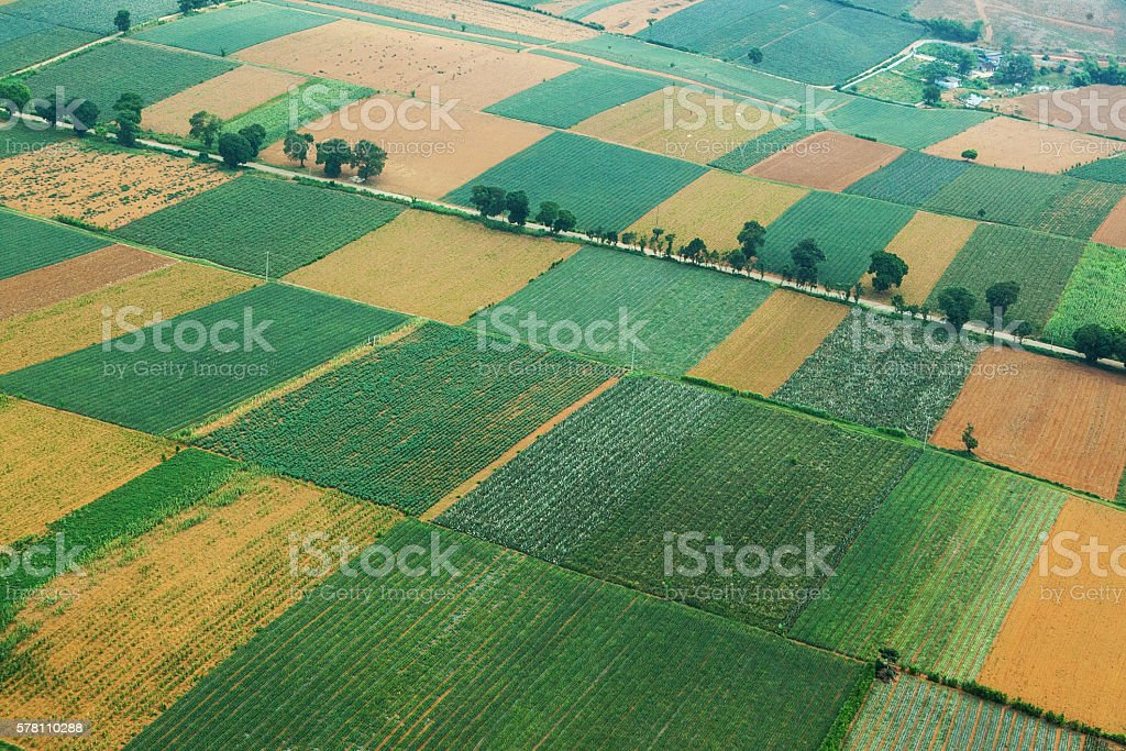 Aerial view over colourful fields in Ninh Binh, Vietnam. stock photo