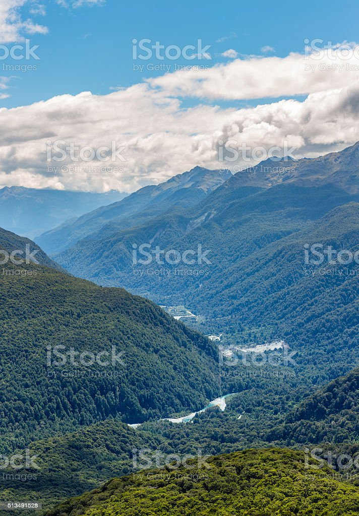 Aerial view over the forest stock photo
