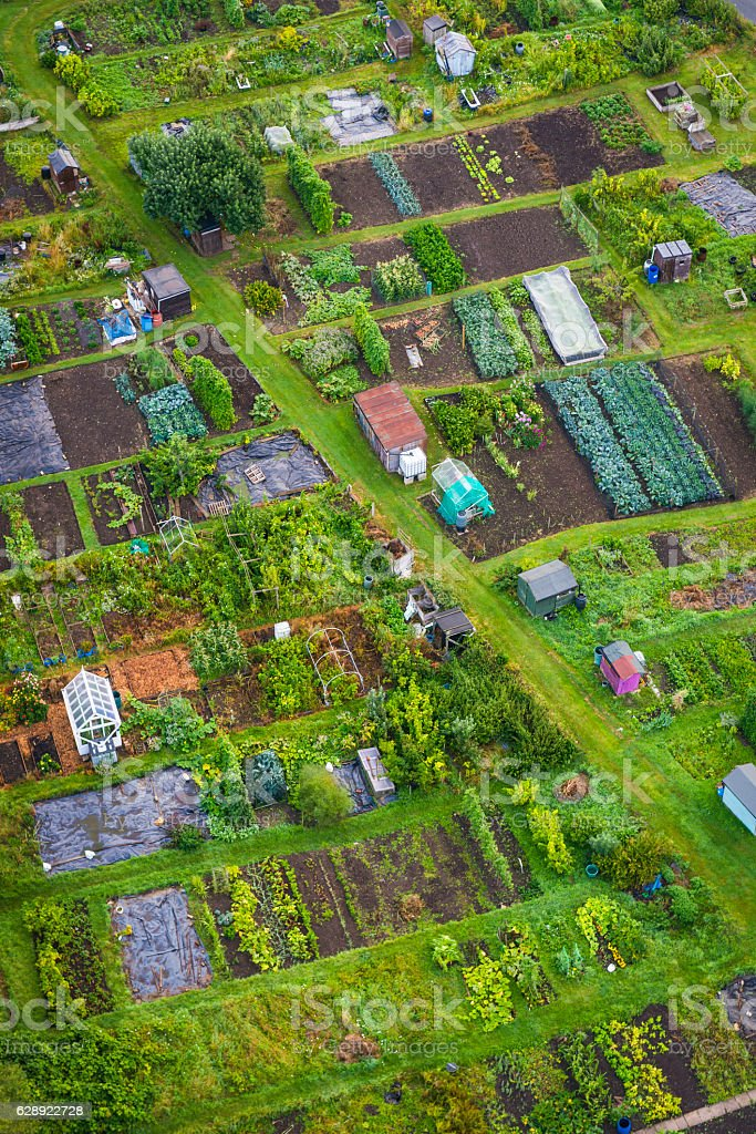 Aerial view over vegetable patch gardens colourful allotments sheds crops stock photo