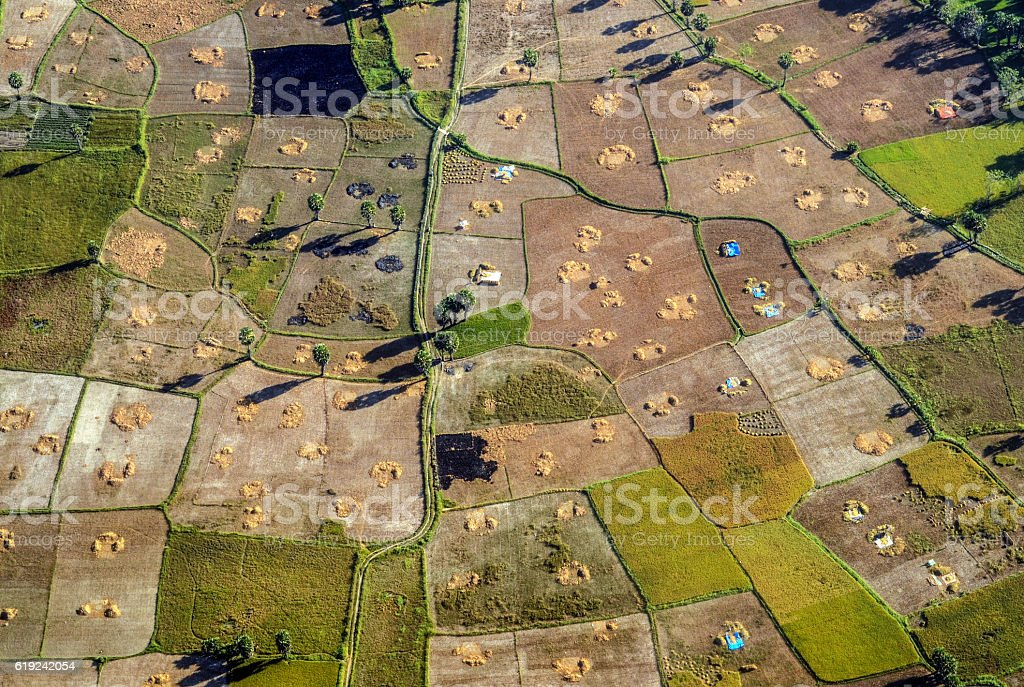 Aerial view Rice Field Moment after Harvest Season stock photo