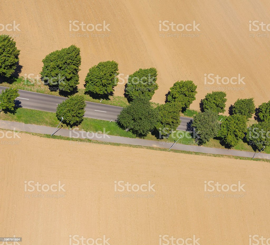 Aerial view village of treelined road with trees stock photo