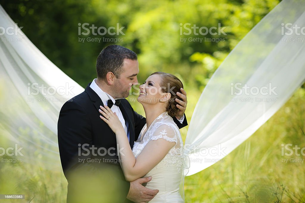 affection and love royalty-free stock photo