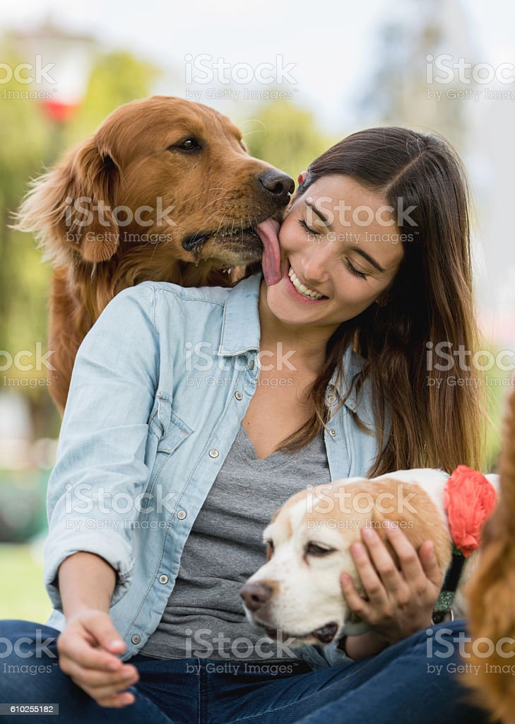 Affectionate dog kissing a woman stock photo
