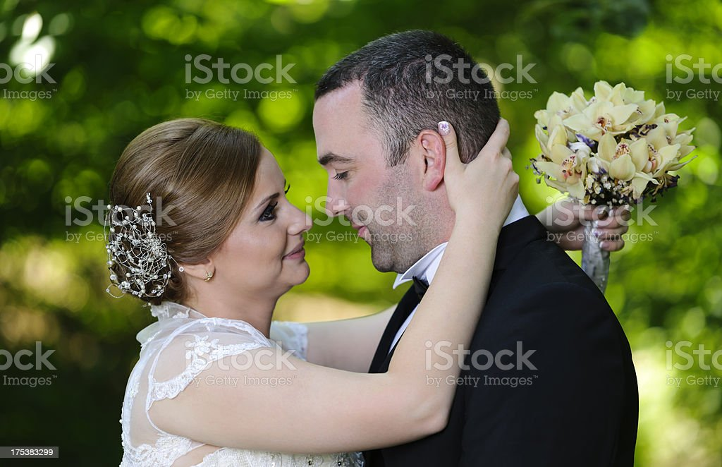 affectionate grooms royalty-free stock photo