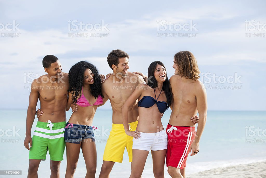 Affectionate group of friends on the beach royalty-free stock photo