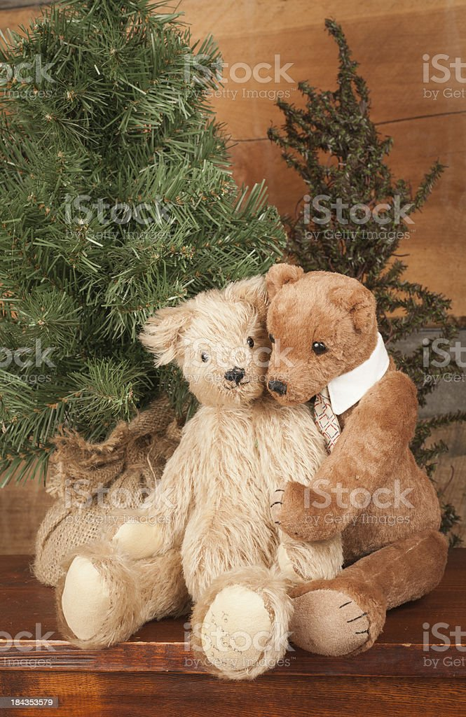 Affectionate Snuggling Teddy Bears royalty-free stock photo