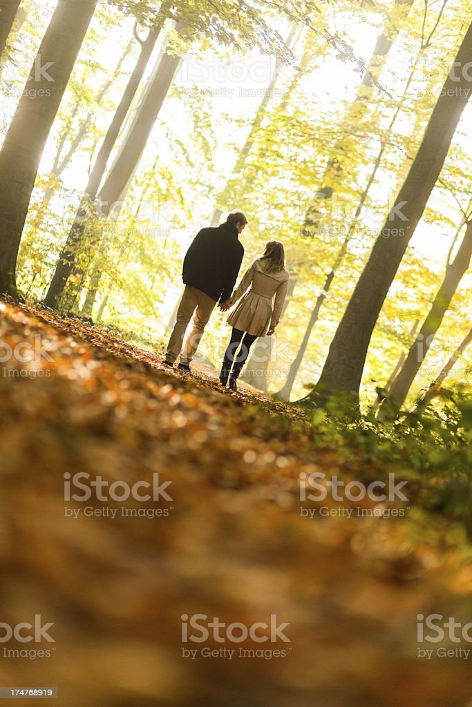 Affectionate young couple walking in a park stock photo