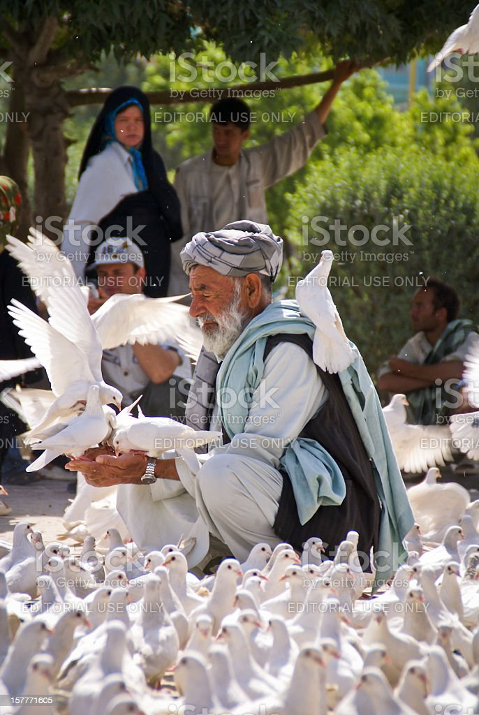 Afghan Man feeding doves at the Blue Mosque in Mazar stock photo