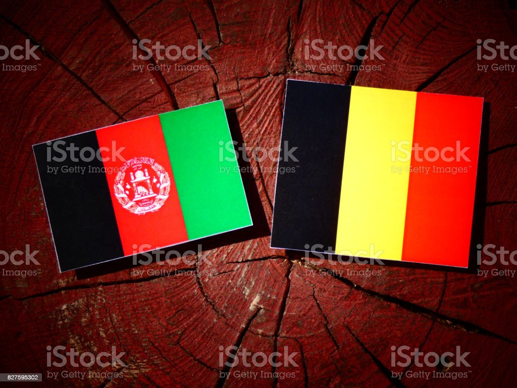 Afghanistan flag with Belgian flag on a tree stump isolated stock photo
