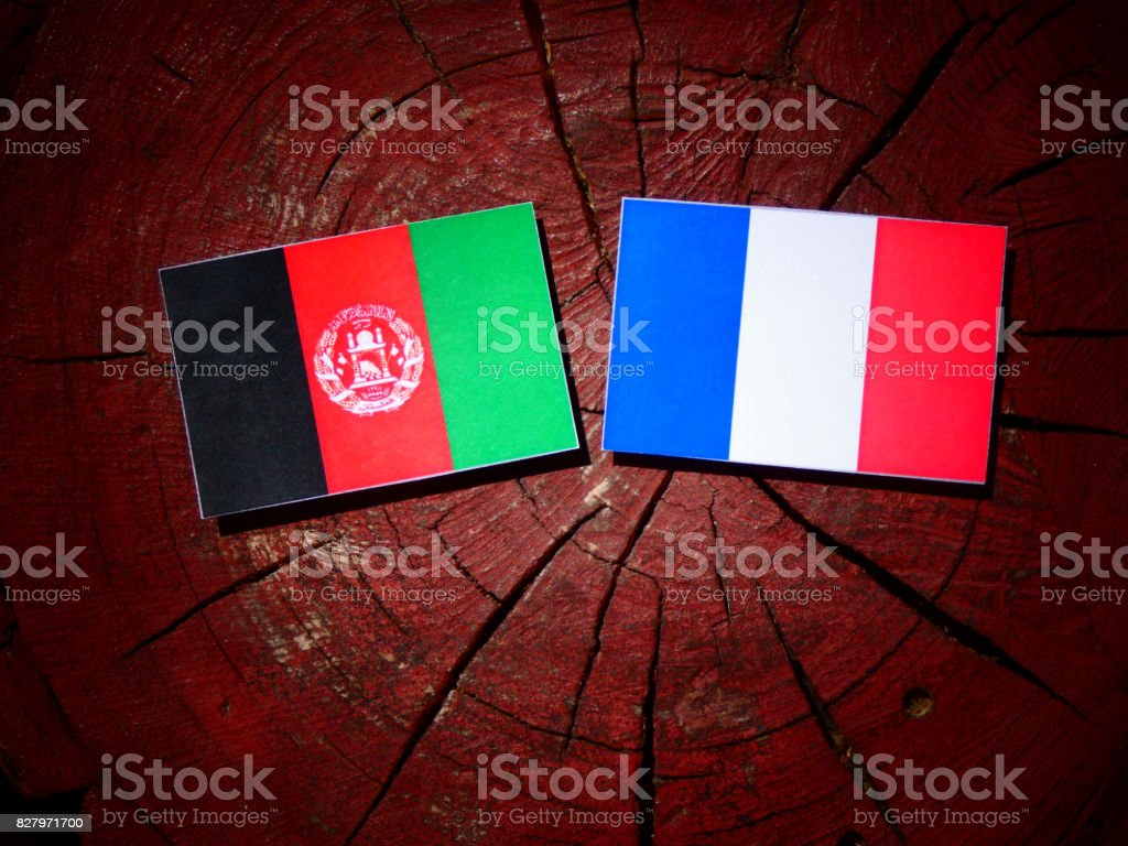 Afghanistan flag with French flag on a tree stump isolated stock photo