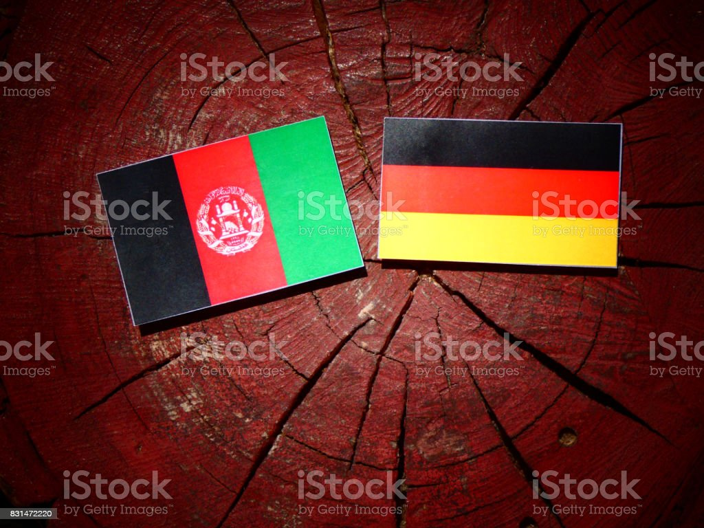 Afghanistan flag with German flag on a tree stump isolated stock photo