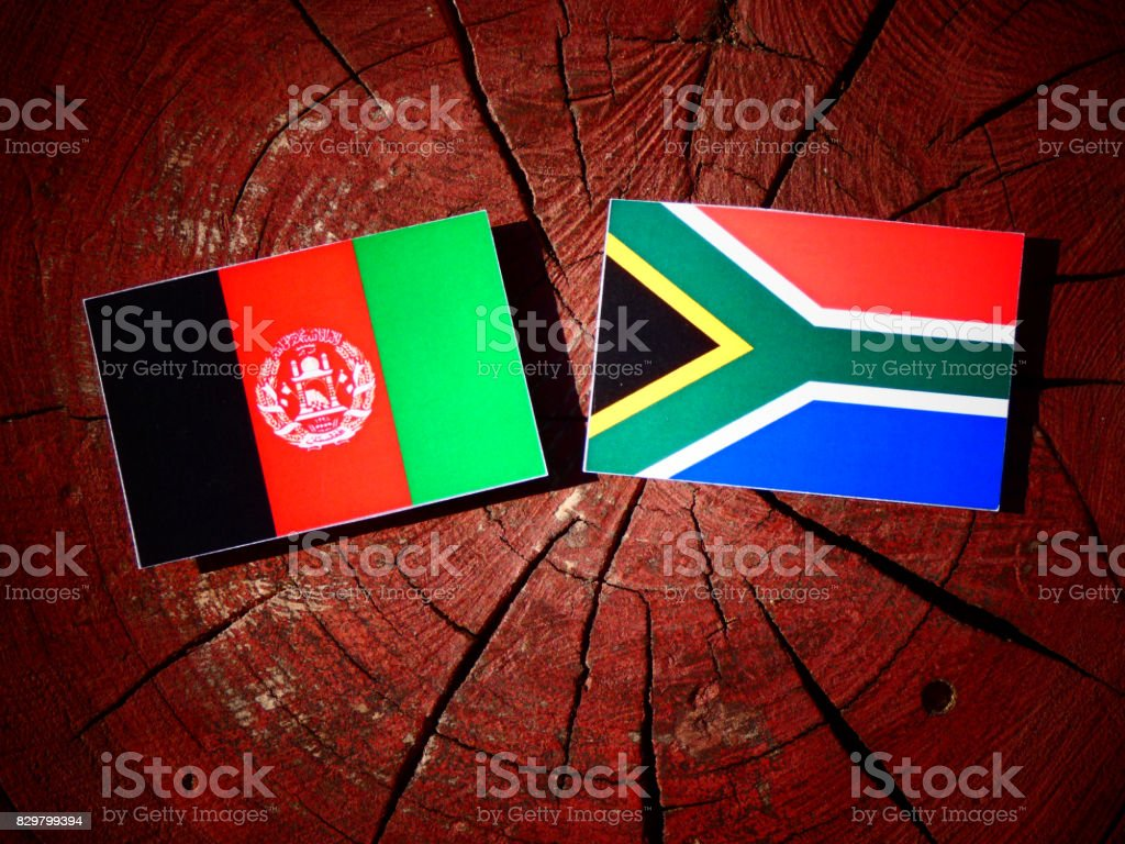 Afghanistan flag with South African flag on a tree stump isolated stock photo