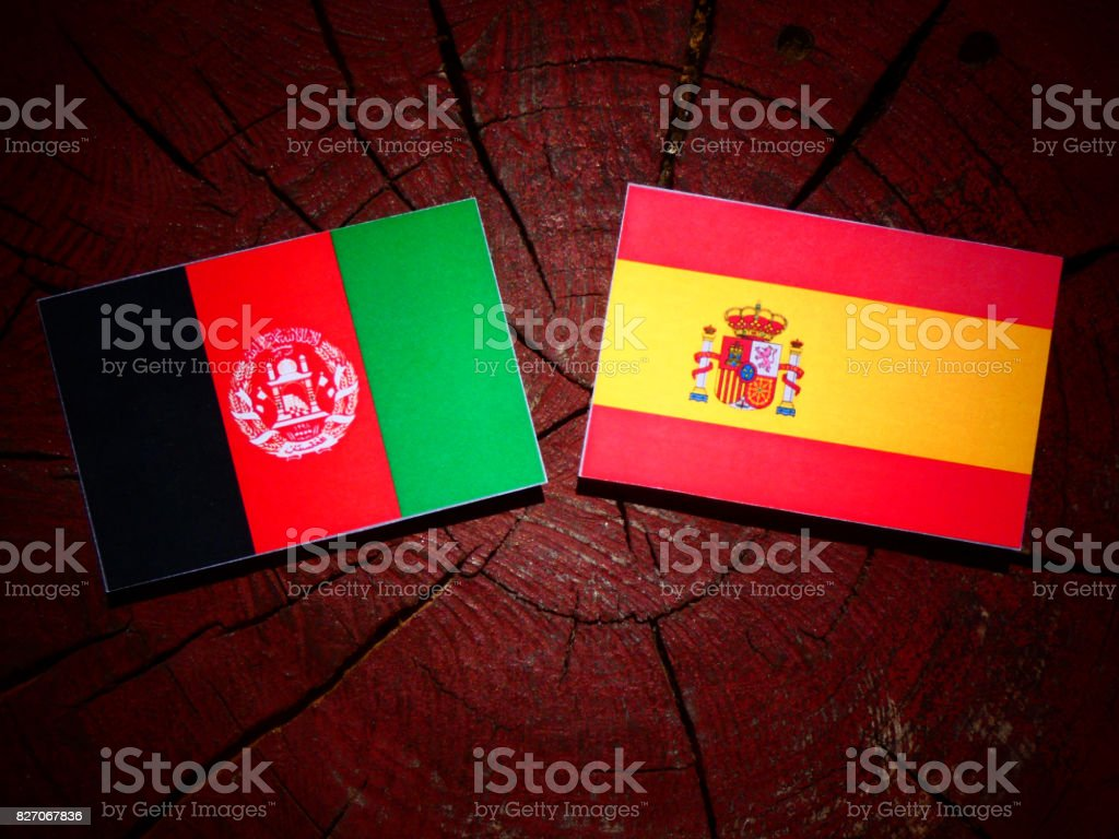 Afghanistan flag with Spanish flag on a tree stump isolated stock photo