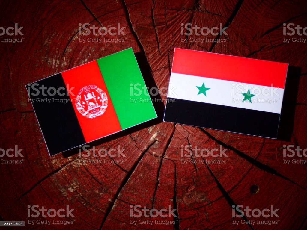 Afghanistan flag with Syrian flag on a tree stump isolated stock photo