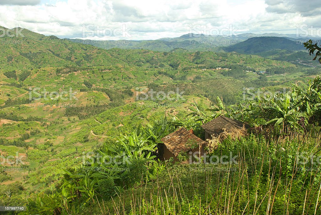 Afican fields - green farmland in the heart of Africa stock photo