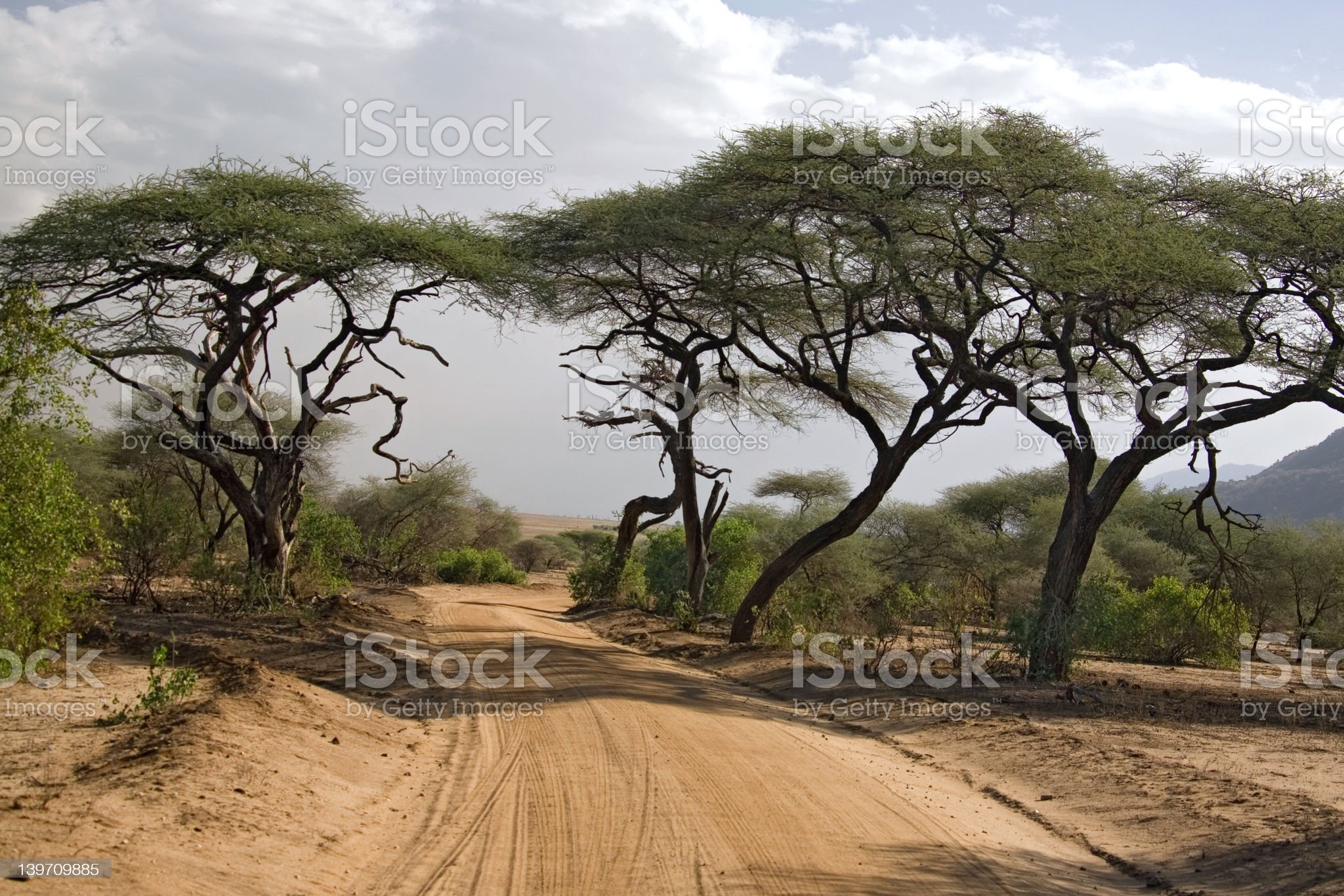 africa landscape royalty-free stock photo