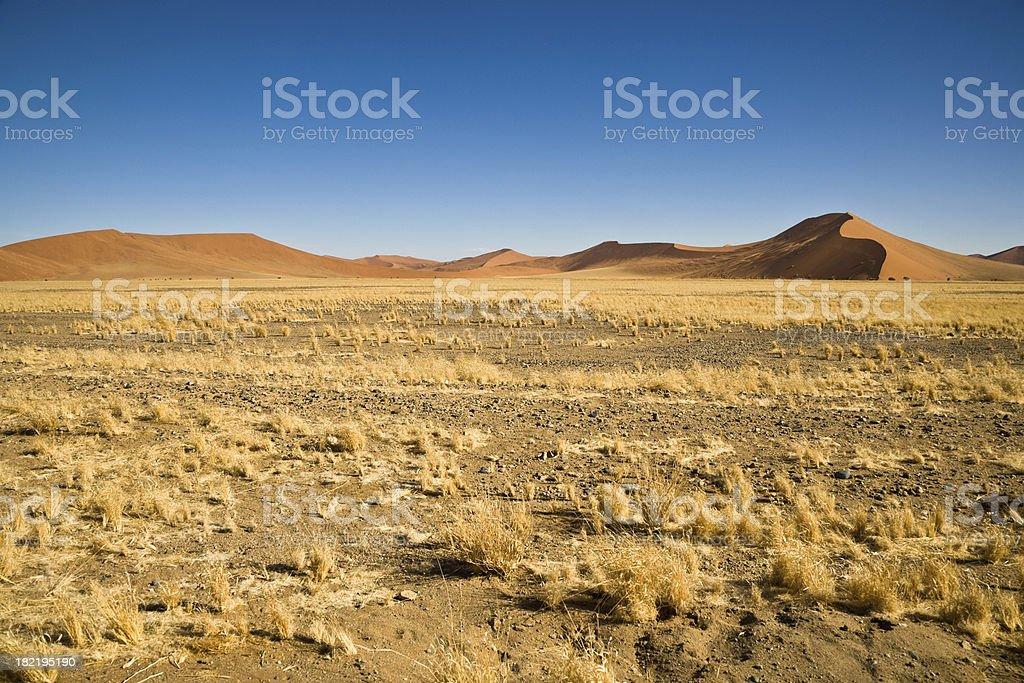 Africa Namibian Desert Sand Dune Landscape royalty-free stock photo