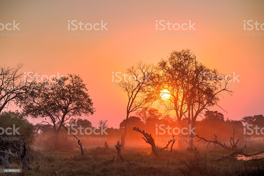 Africa Sunset stock photo
