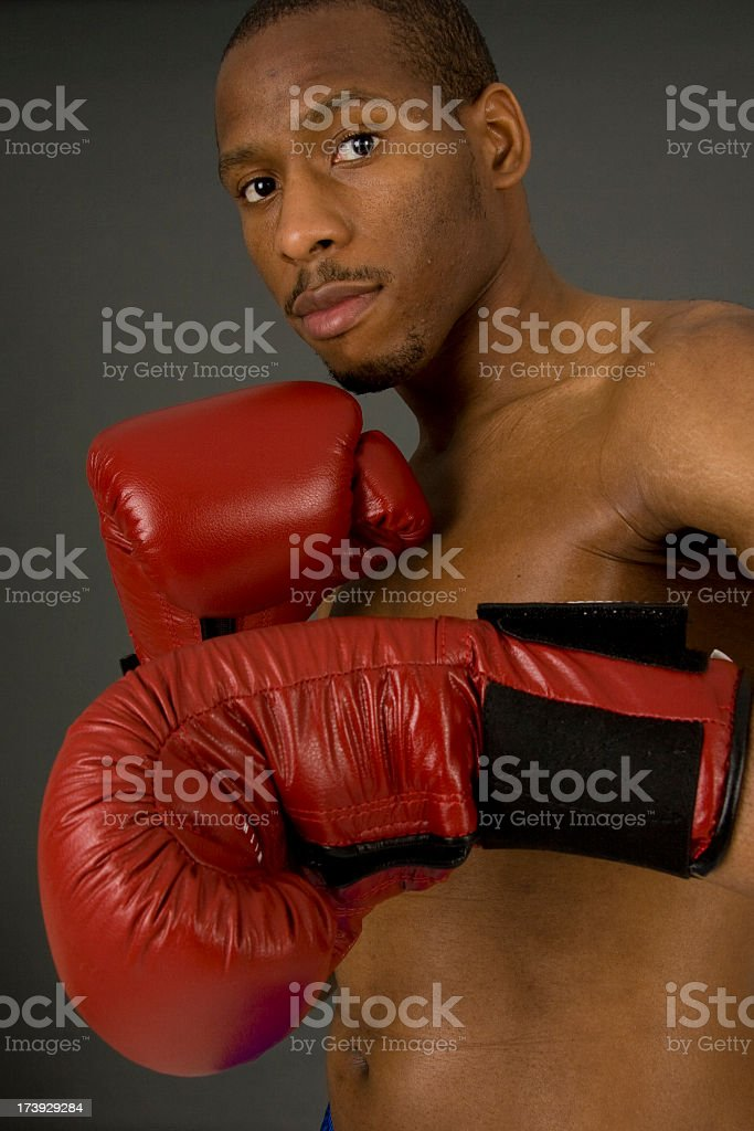 African American Boxer Read For a Fight royalty-free stock photo