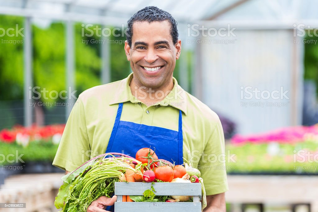 African American farmer holds basket of vegetables stock photo