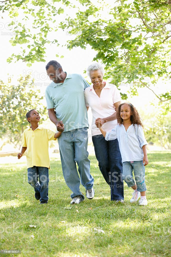 African American grandparents and grandchildren in the park royalty-free stock photo